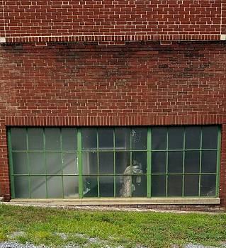 Bricks and Glass by Jennifer Fliegel