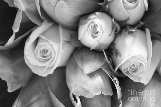 Bridal Bouquet B W by Denise Jenks