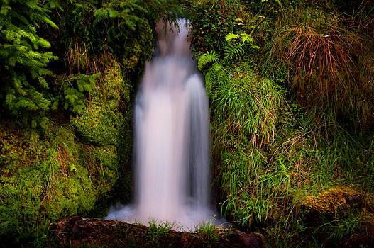 Jenny Rainbow - Bridal Dress. Waterfall at Benmore Botanical Garden. Nature of Scotland