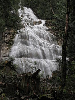 Bridal Veil Water Falls by Pamela Funk