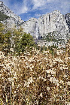 Susan Gary - Bridalveil Falls in Autumn