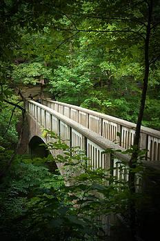 Bridge Among the Trees by Jennifer Englehardt