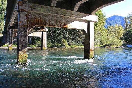 Bridge at River by Tim Rice