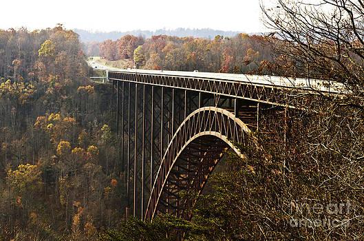 Bridge by Blink Images