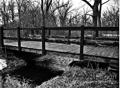 Bridge by Catherine Hill