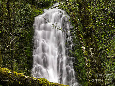 Tim Moore - Bridge Creek Falls