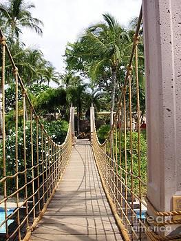 Bridge by Crystal Miller