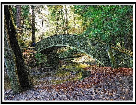 Bridge #I by Penny McClintock
