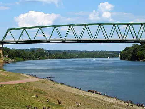 Melissa Lightner - Bridge in Marietta