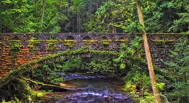 Bridge of Times by Ray Still