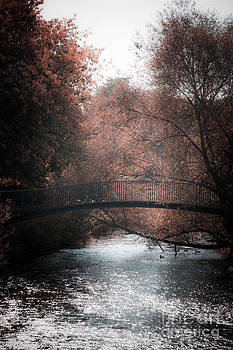 Bridge over sparkling river by Peter Noyce