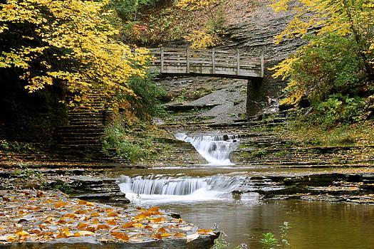 Bridge Over Stony Brook by Judd Connor