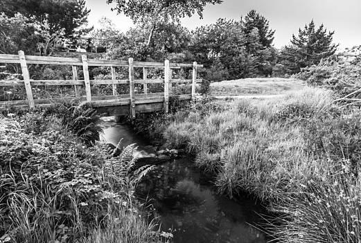 Bridge over water by Simon Conisbee