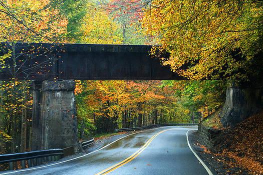 Bridge by Rebecca  Barray