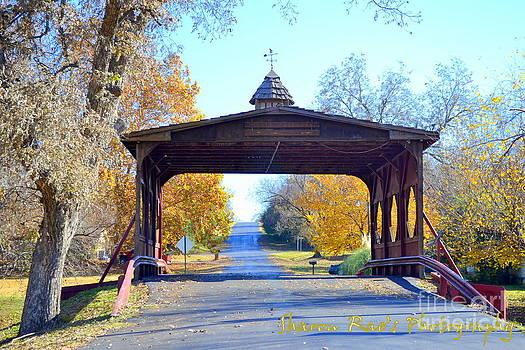 Bridge by Sharon Farris