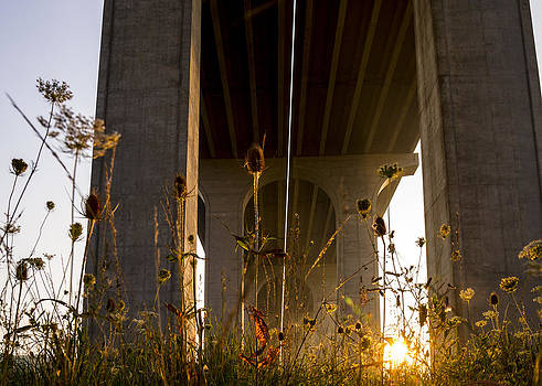 Bridge Sunrise II  by Tim Fitzwater