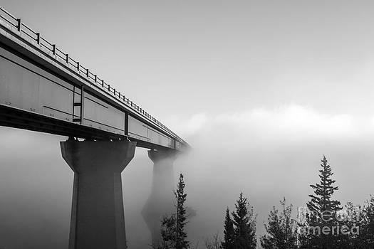 Alanna DPhoto - Bridge to a dream