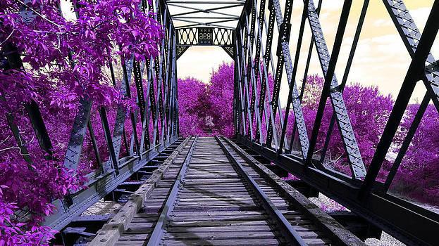 Bridge to Tarabithida by Erin Britton