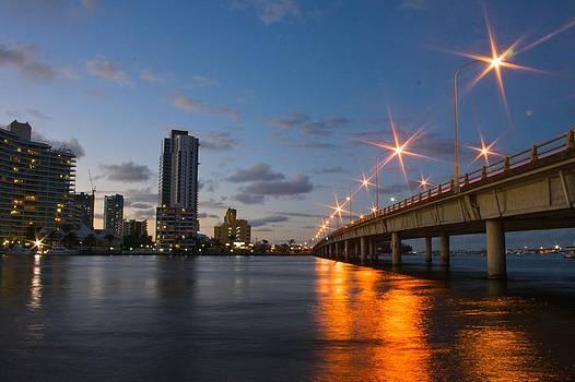Bridge to the City by Shane Dickeson