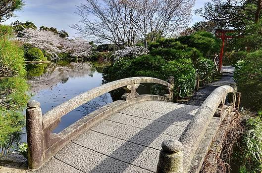 Matt Swinden - Bridge to the Japanese Garden