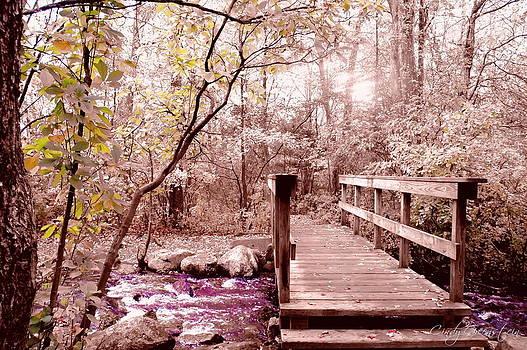Bridge to Utopia  by Cindy Greenstein