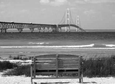 Bridge View 2 by Melissa McDole