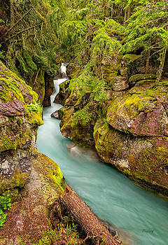 Bridge View of Avalanche Gorge Waterfalls by Fred J Lord