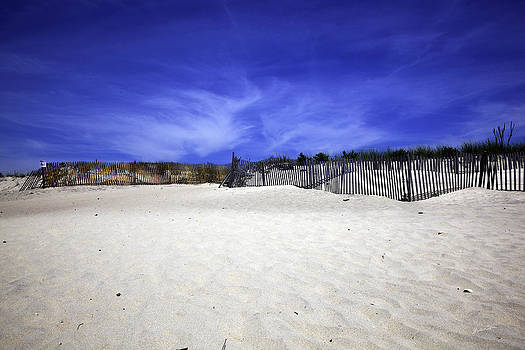 Bridgehampton Beach - Fences 2 by Madeline Ellis