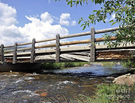 Bridges 2 by Minnie Lippiatt