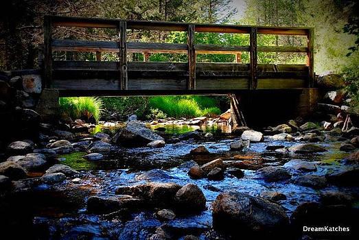 Bridges by Dream Katches Photography