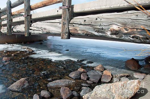 Bridges by Minnie Lippiatt