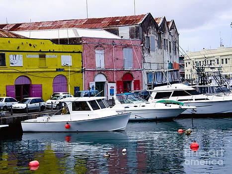 Sophie Vigneault - Bridgetown Barbados