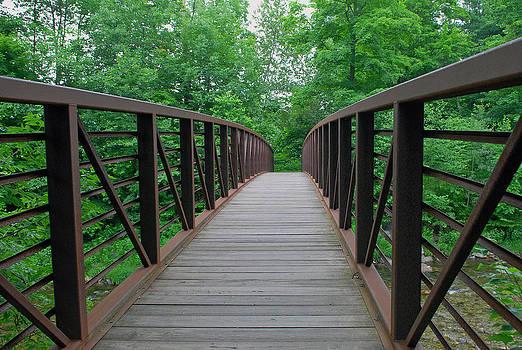Lisa Phillips - Bridging the Gap