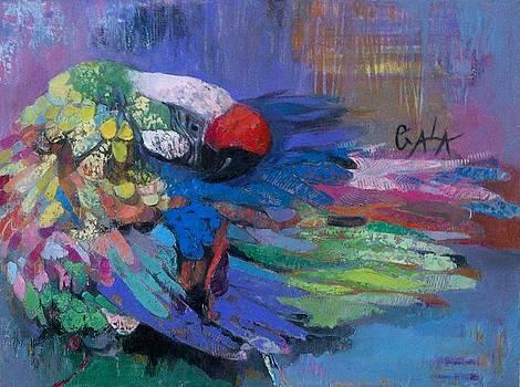 Bright by GALA Koleva