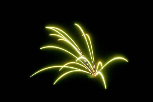 Devinder Sangha - Bright Green