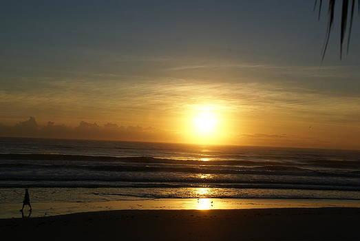 Patricia Twardzik - Bright Lite Sunrise