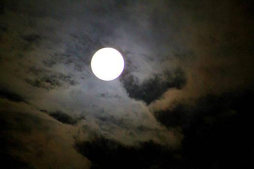 Bright Night by Kay Mathews