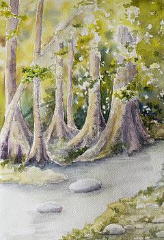 Bright Woods by Ida Yavari
