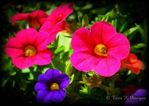 Brightens the day by Terri K Designs