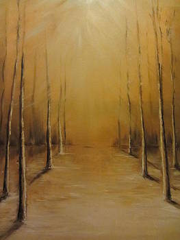 Brightness by Jenny Forsman