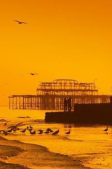 Brighton West Pier by Tim Kahane