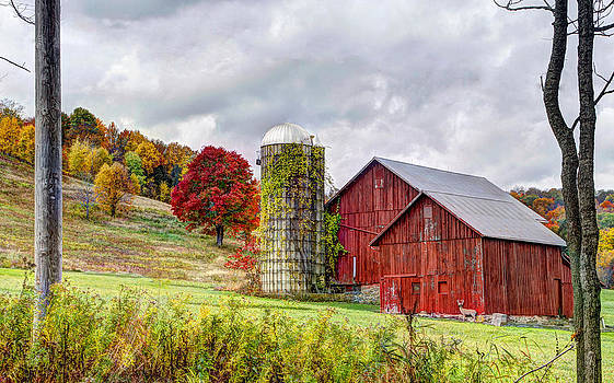 Brilliant Fall Colors by David Simons