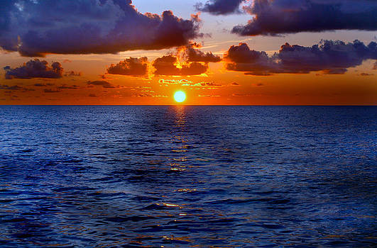 Donna Proctor - Brilliant Sunset
