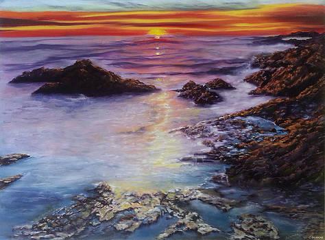 Brilliant Twilight by Brenda Salamone