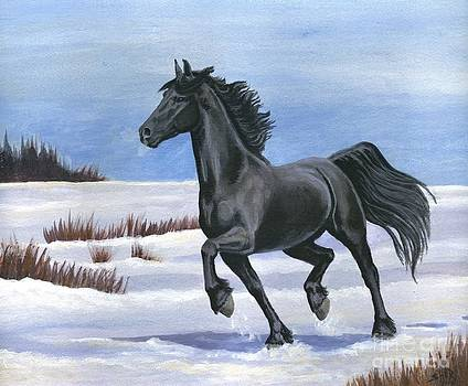 Brisk Trot by Sheri Gordon