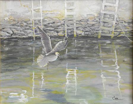 Bristol Docks lll by Cae Wuerth