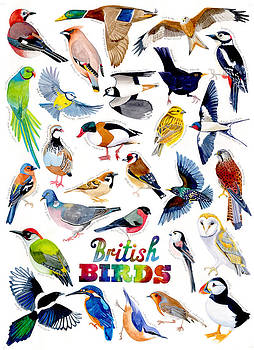 British birds by Jane Tomlinson
