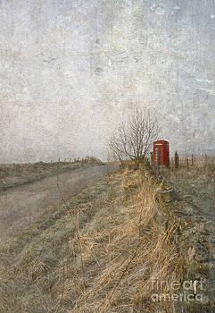 Liz  Alderdice - British Phone Box