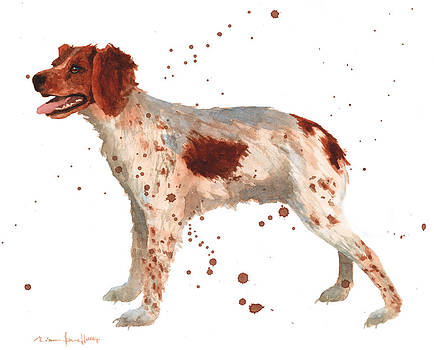 Brittany Spaniel by Alison Fennell