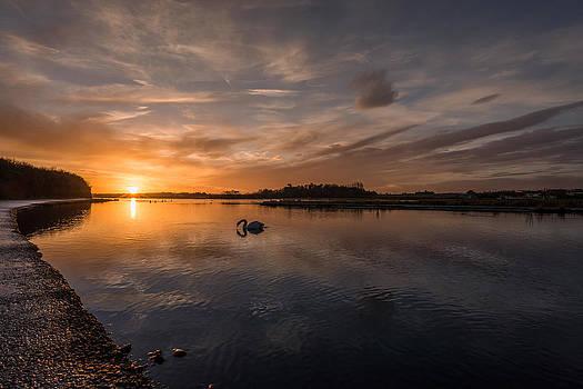 Martina Fagan - Broadmeadows estuary